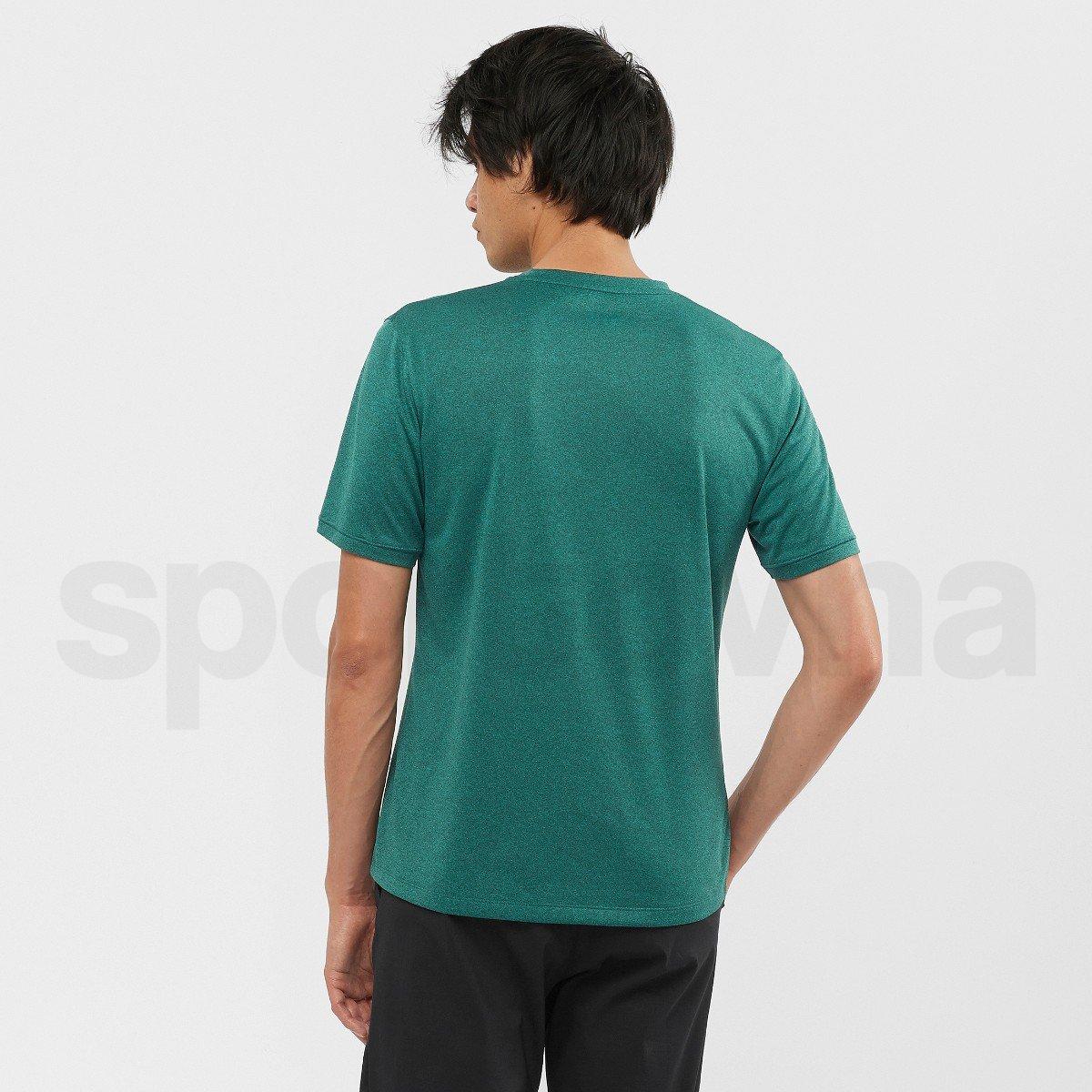 Tričko Salomon EXPLORE TEE M - zelená