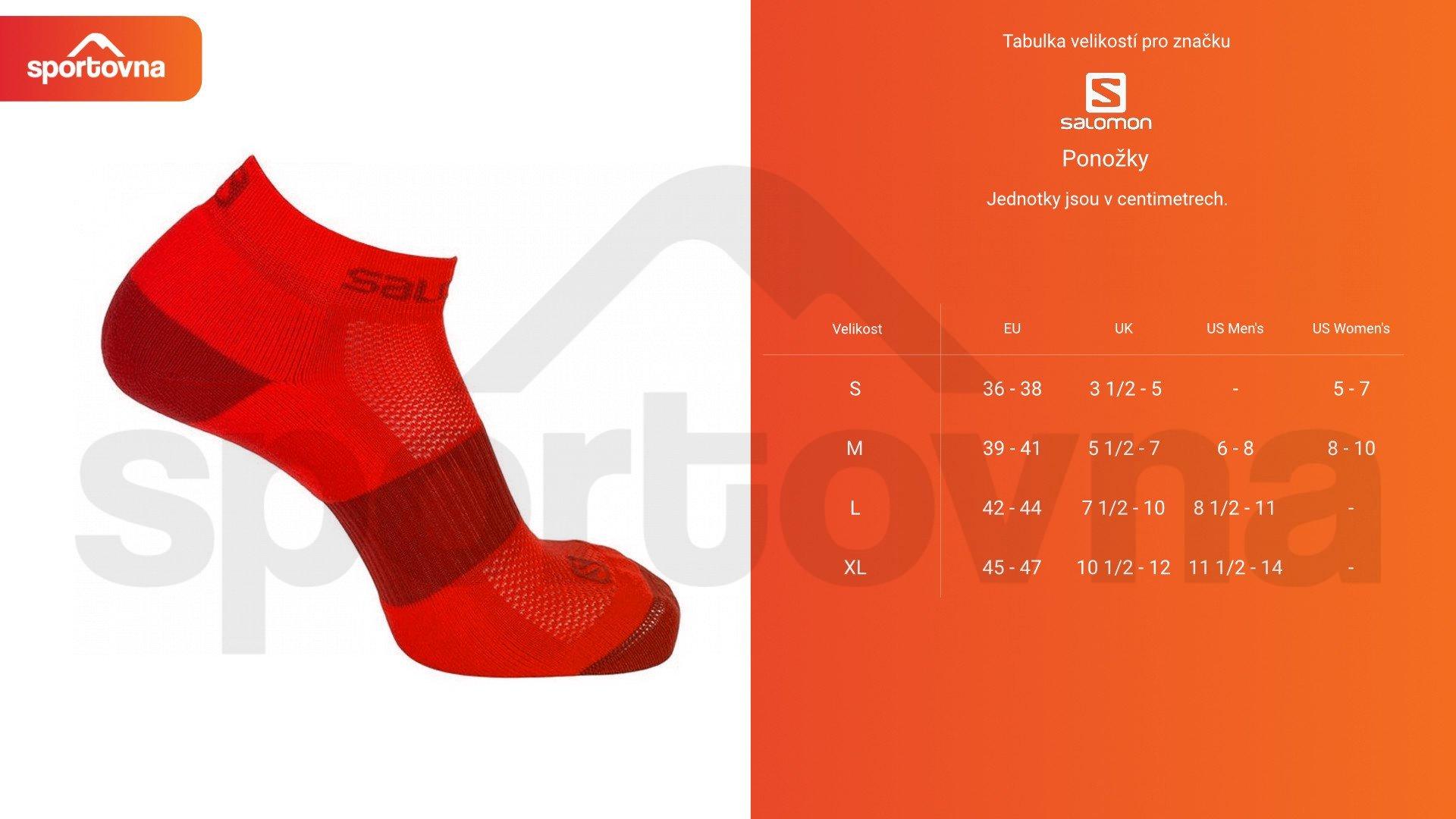Ponožky Salomon OUTLINE PRISM 2-PACK - světle šedá/tyrkysová