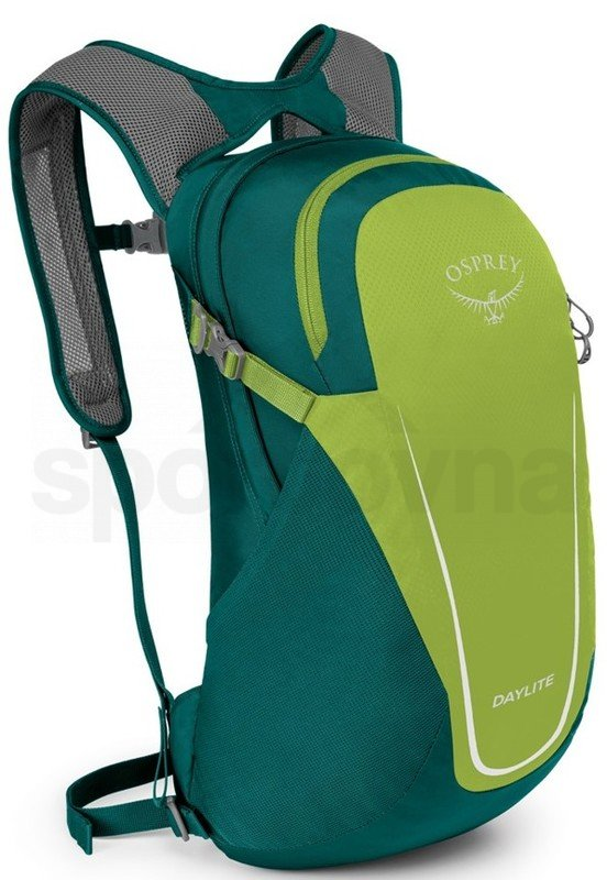 10006161OSP_Daylite II, hostas green